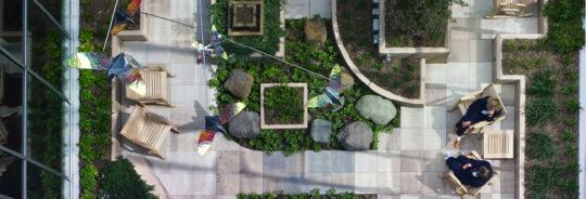 Roof top garden image