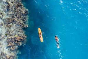 Two female surfers in bikinis float above a coral reef, one on a long board